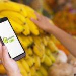 Bio Lebensmittel gesund