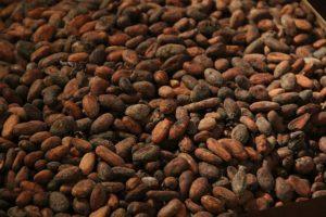 Kakaonibs Rezepte